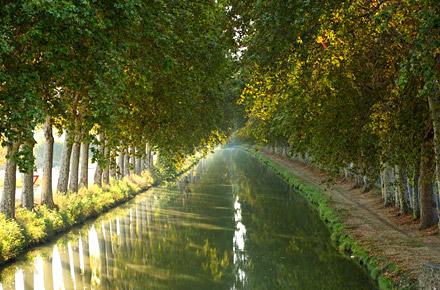 A zonzo tra i canali francesi e inglesi sull 39 onda non for Scaffali di campagna francese