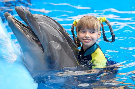 Nuotare Con I Delfini In Repubblica Dominicana Farsi Il